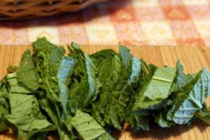 Agurklės lapai salotoms