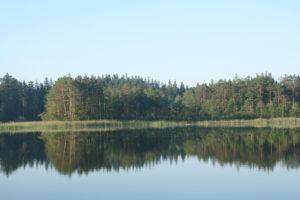 Ramus ežero vanduo