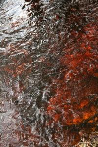 Vanduo raibuliuoja pilnuose pamiškių grioviuose