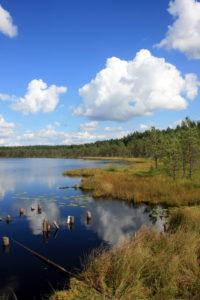 Ežeras Skaistis