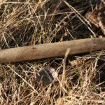Medinis lovelis įkalamas į skylę sulai bėgti.