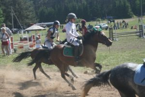 Ponių lenktynės